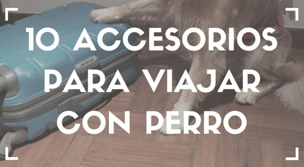 Accesorios para viajar con perro