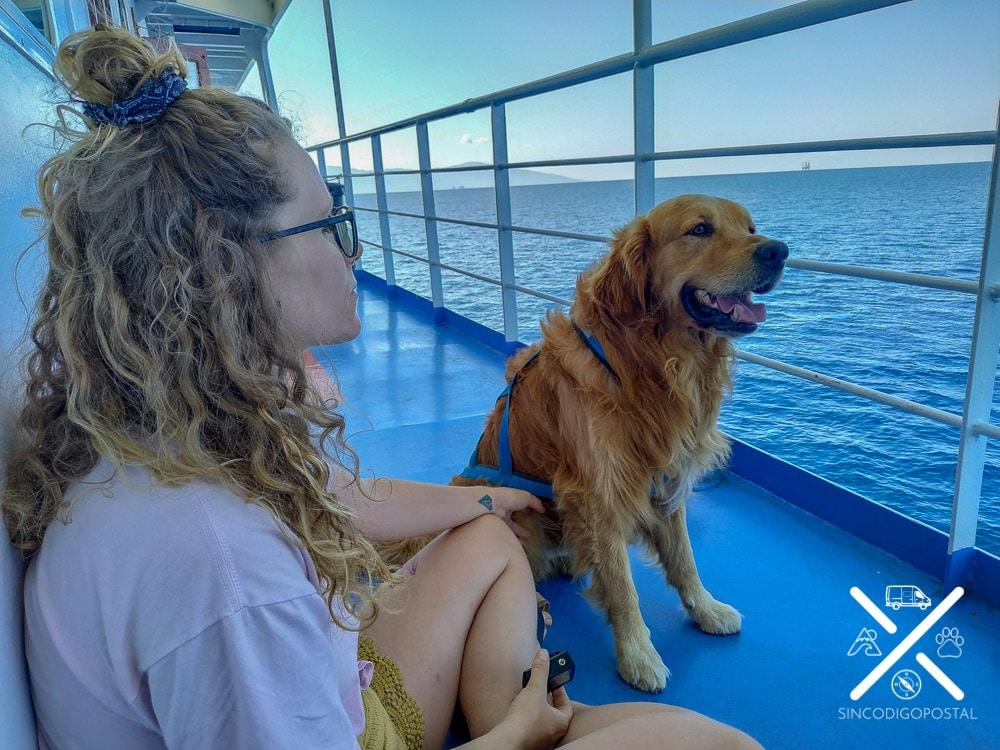 Viajar en ferry con perro