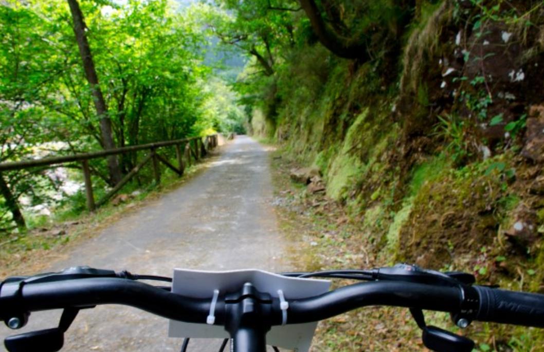Bicicleta en la senda del oso