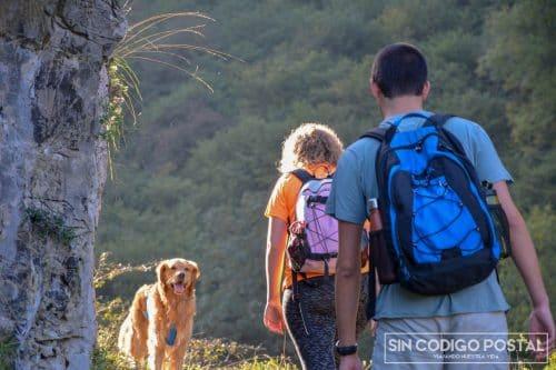 perro ruta las xanas (10)