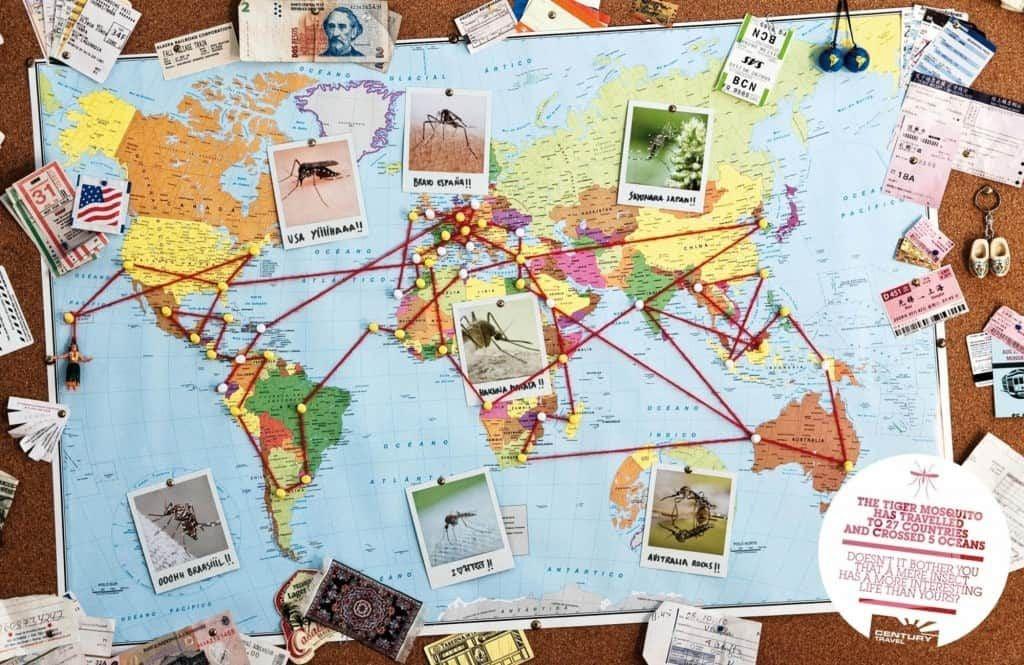 planificacion y precio vuelta alrededor mundo-min
