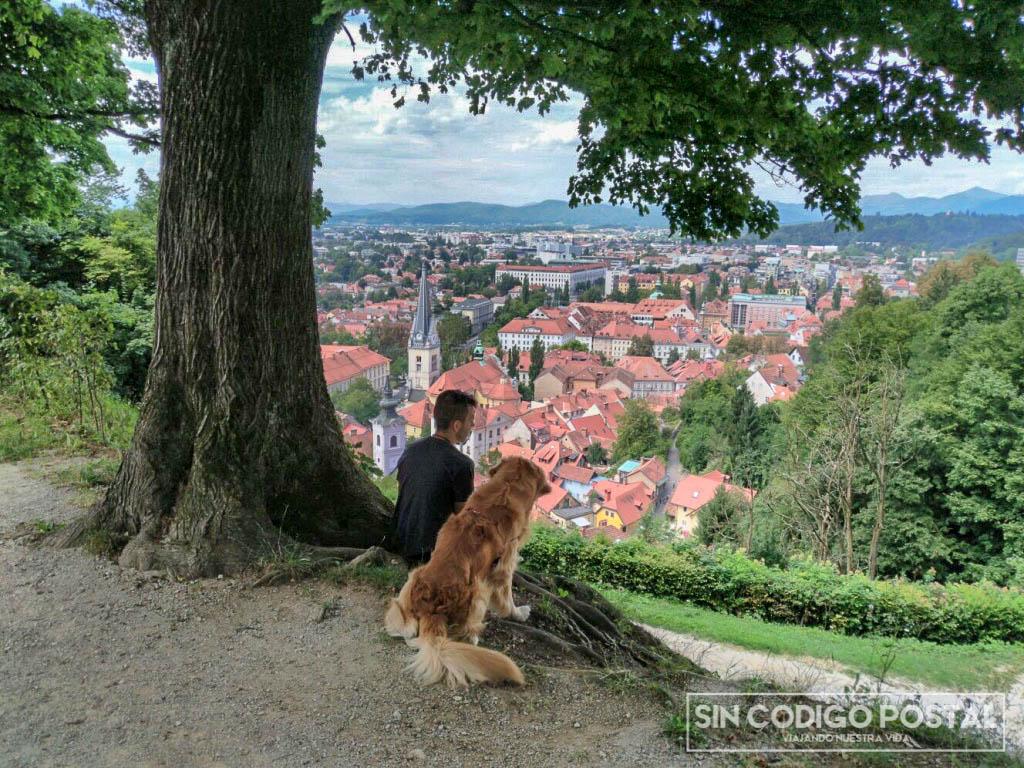 vistas castillo Liubliana