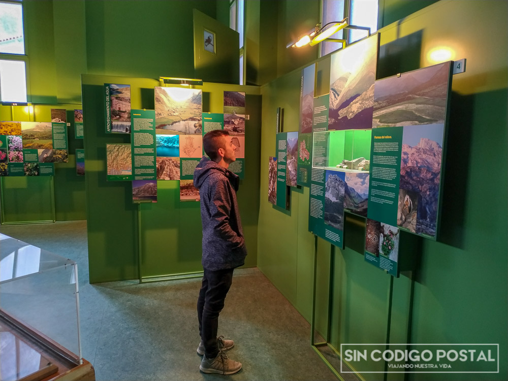 Museo-Interpretación del parque y del oso de Somiedo