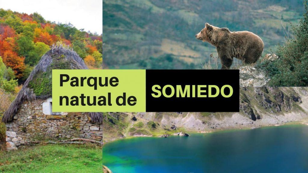Guía del parque natural de Somiedo