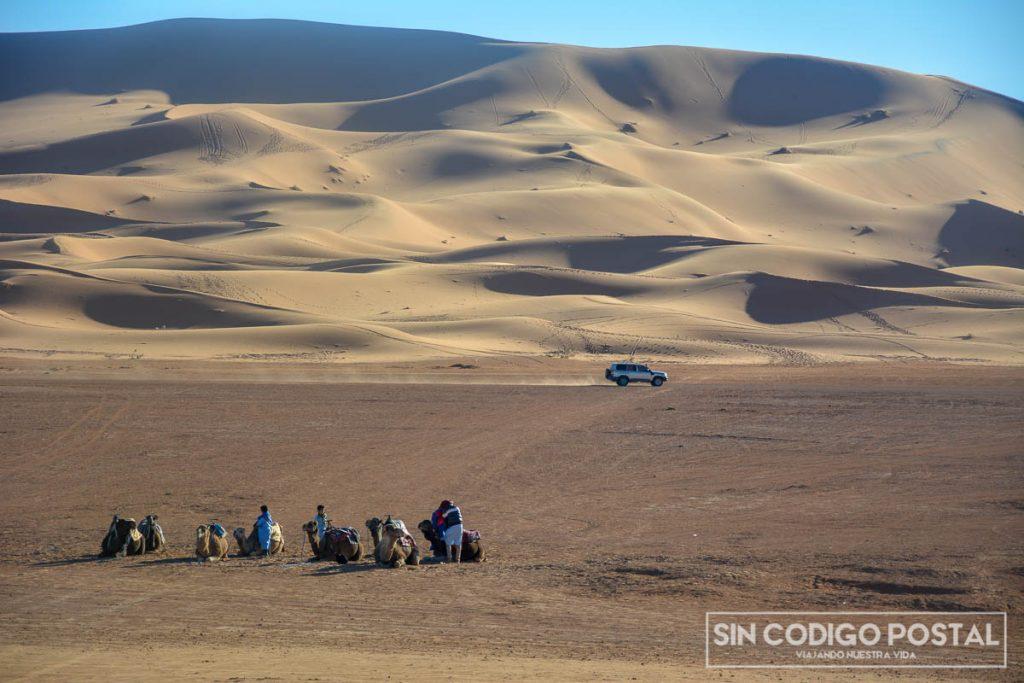 El desierto junto a nuestros camellos y un 4x4