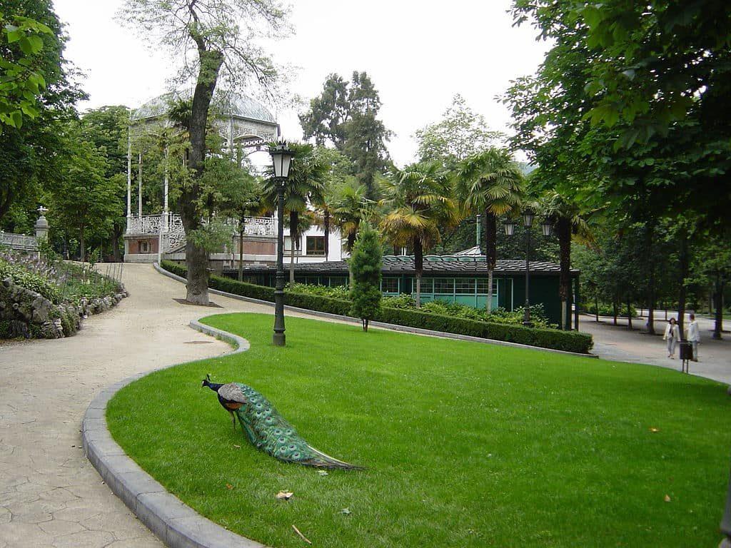 Parque San Francisco con un Pavo Real y el kiosko al fondo