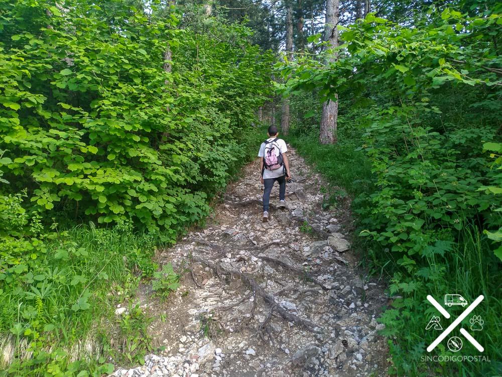 Camino a la Cascada Skakavac