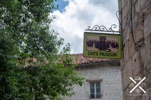 Museo de los Gatos en Kotor