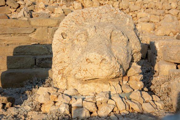 Cabeza de León