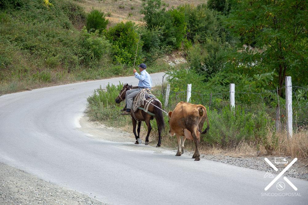 Camino hacia el Valle de Osumi