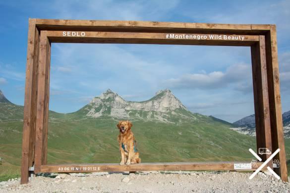 Preparado para la foto en el Parque de Durmitor, Montenegro