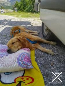 Un día de descanso después de muchas rutas en el Valle de Thet, Albania