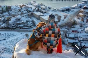 Noruega con perro
