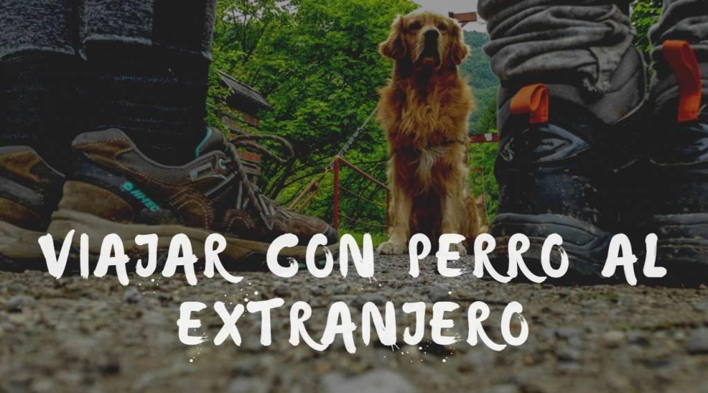 viajar con perro al extranjero