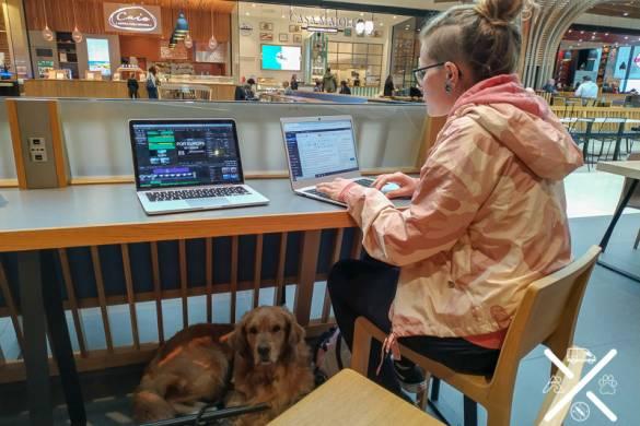 Travijando , trabajando mientras viajo en un centro comercial de Italia que permitían entrar con perro