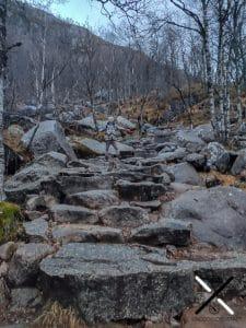 Escaleras de piedra en la ruta del Preikestolen