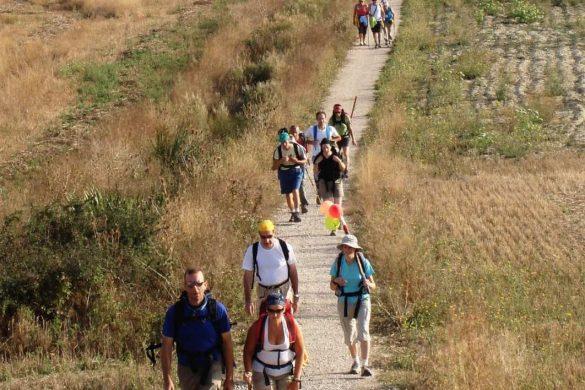 Grupo Camino de Santiago