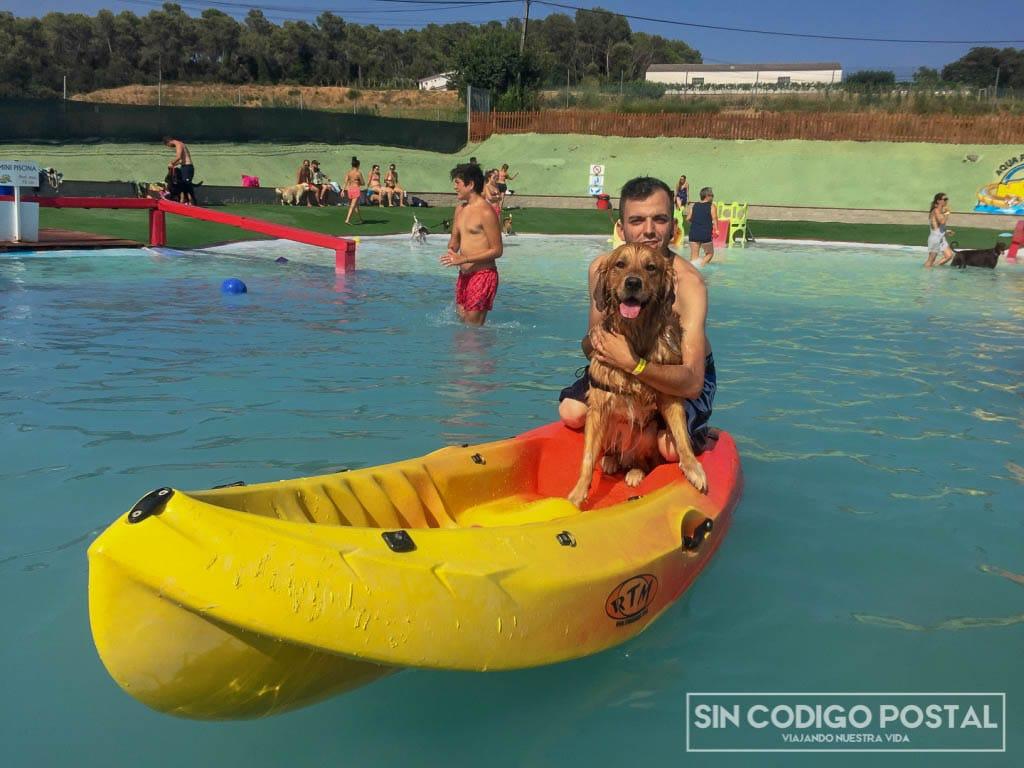 aquapark para perros